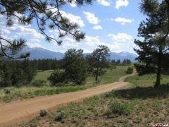 Trail 311