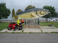 Walleye anyone??  Lake Mille Lacs in background