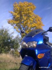 Fall ride pic