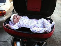 Gwyn in the trunk
