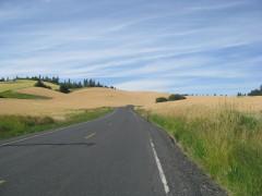 Cavendish Road Idaho