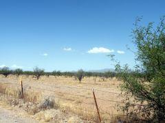 Arivaca, Arizona