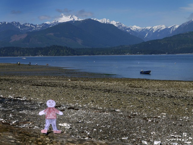 Flat Stanley on Hood Canal
