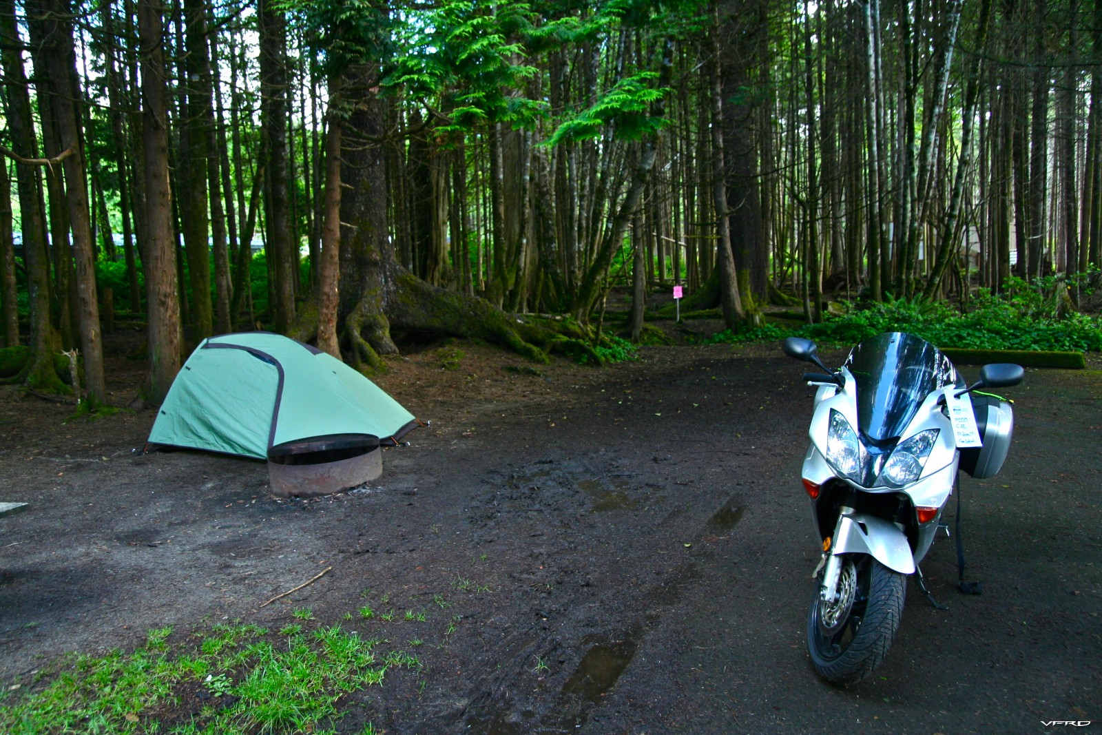 Camping at Cape Lookout, Oregon