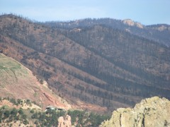 Fire damage from the Waldo Canyon fire