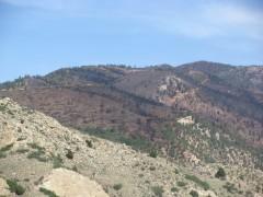 Waldo Canyon Fire Damage just above Glenn Eyre