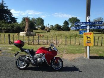 Typical scene Kiwi back roads - local King Country loop.