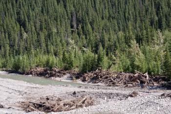 Debris in the Highwood River