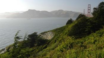 14 Golden Gate