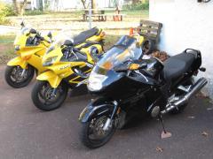 My Hondas