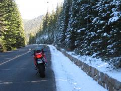 Trail Ridge 3.JPG