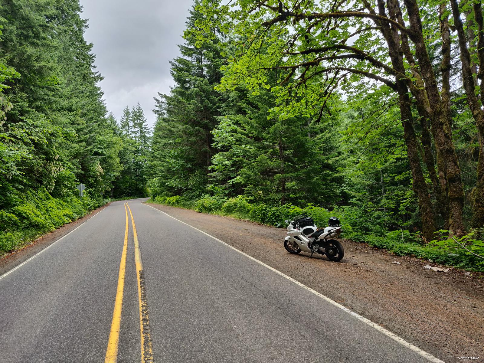 Timber Road